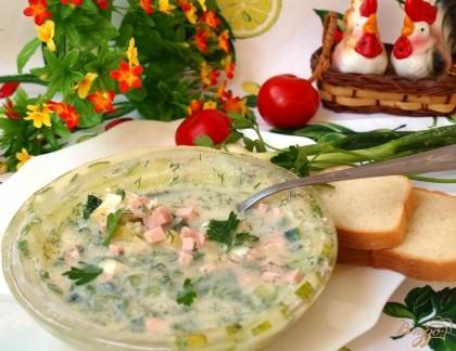 Кулинарные фото салаты в ледяных тарелочках
