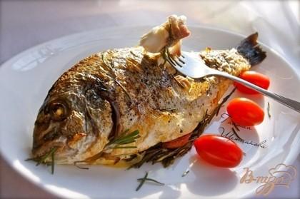 Дорада Dorado рецепт рыбы дорады с фото как