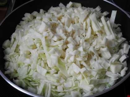 На горячую сковороду налить масло,  добавить лук и капусту.Посолить, тщательно перемешать и жарить на среднем огне 10 минут, перемешивая