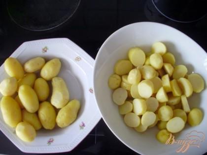 Отварить картофель в мундире, очистить и нарезать толстыми кружочками.