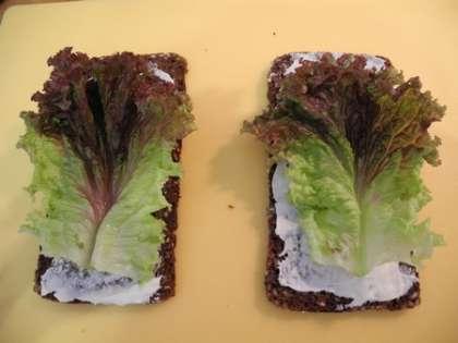 Выложить на каждый хлеб по листу салата