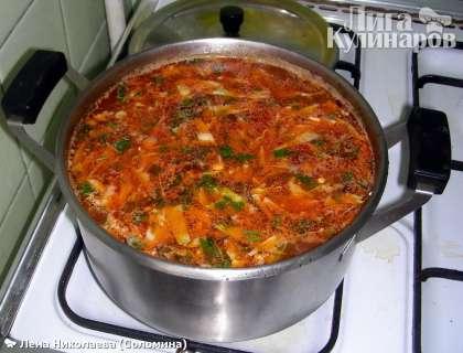 При подаче украсить порубленной зеленью петрушки и укропа, добавить сметану и пару маслин по желанию.  Приятного аппетита!