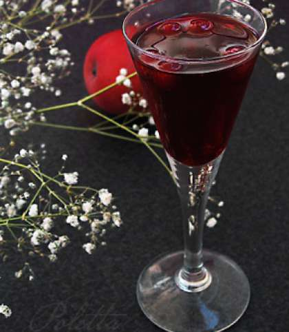 Настойка на спирту из клюквы в домашних