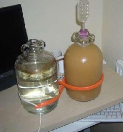 Вино из яблочного пюре своими руками - ЗАО Авто