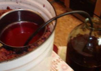 Сделать вино изабелла в домашних условиях