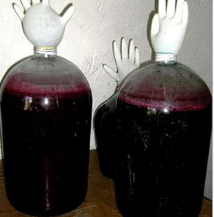 Самодельное вино с винограда изабелла