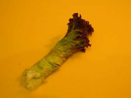 Свернуть лист салата в трубочку